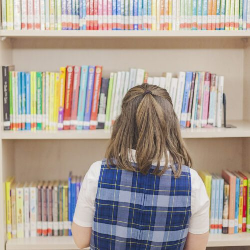 Library1 - Dayspring Academy